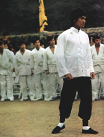 Bruce Lee On The Martial Arts