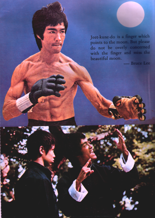 Jeet-Kune Do Is A Finger Which Points To The Moon